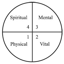Four Quadrants of Evolution - Phsyical, Vital, Mental and Spiritual