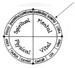 circle-quarters-mental-arrow